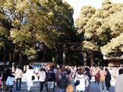 明治神宮に317万人が初詣で−30年連続で「日本一」に