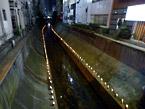 川遊び×SHIBUYAscape